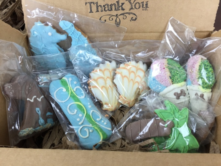 petit fours dog treats box may 2016 IMG_0605