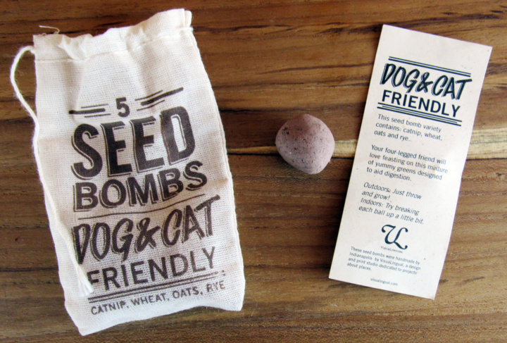 Cat-Friendly Seed Bombs