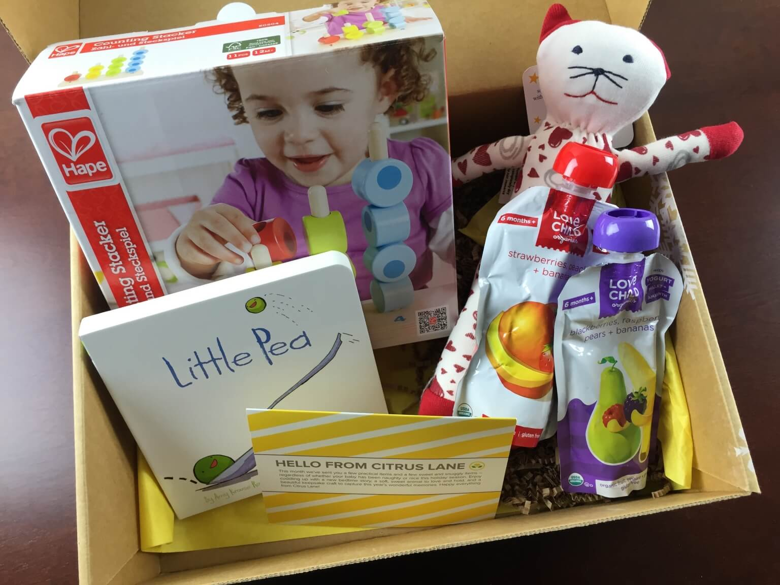 December 2014 Citrus Lane Review & Coupons – 1 year 4.5 months Girl