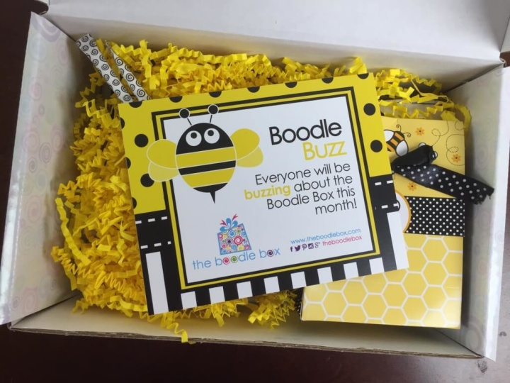 boodle box july 2015 review