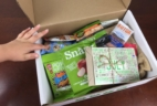 SnackSack Subscription Box July 2015 Review & Coupon