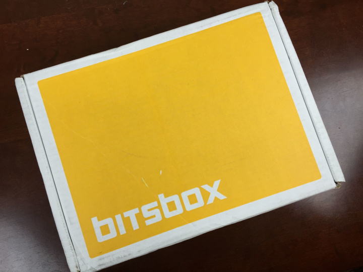 bitsbox august 2015 box