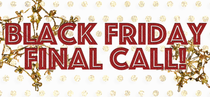 Black Friday Subscription Box Deals Final Call