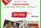 PetGiftBox Cyber Monday Deal – 85% Off First Box!