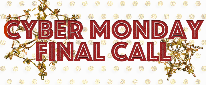 cyber monday finall call