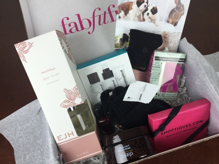 fabfitfun winter 2015 review