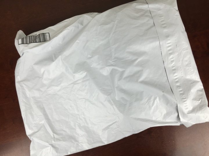 january 2016 fabletics bag
