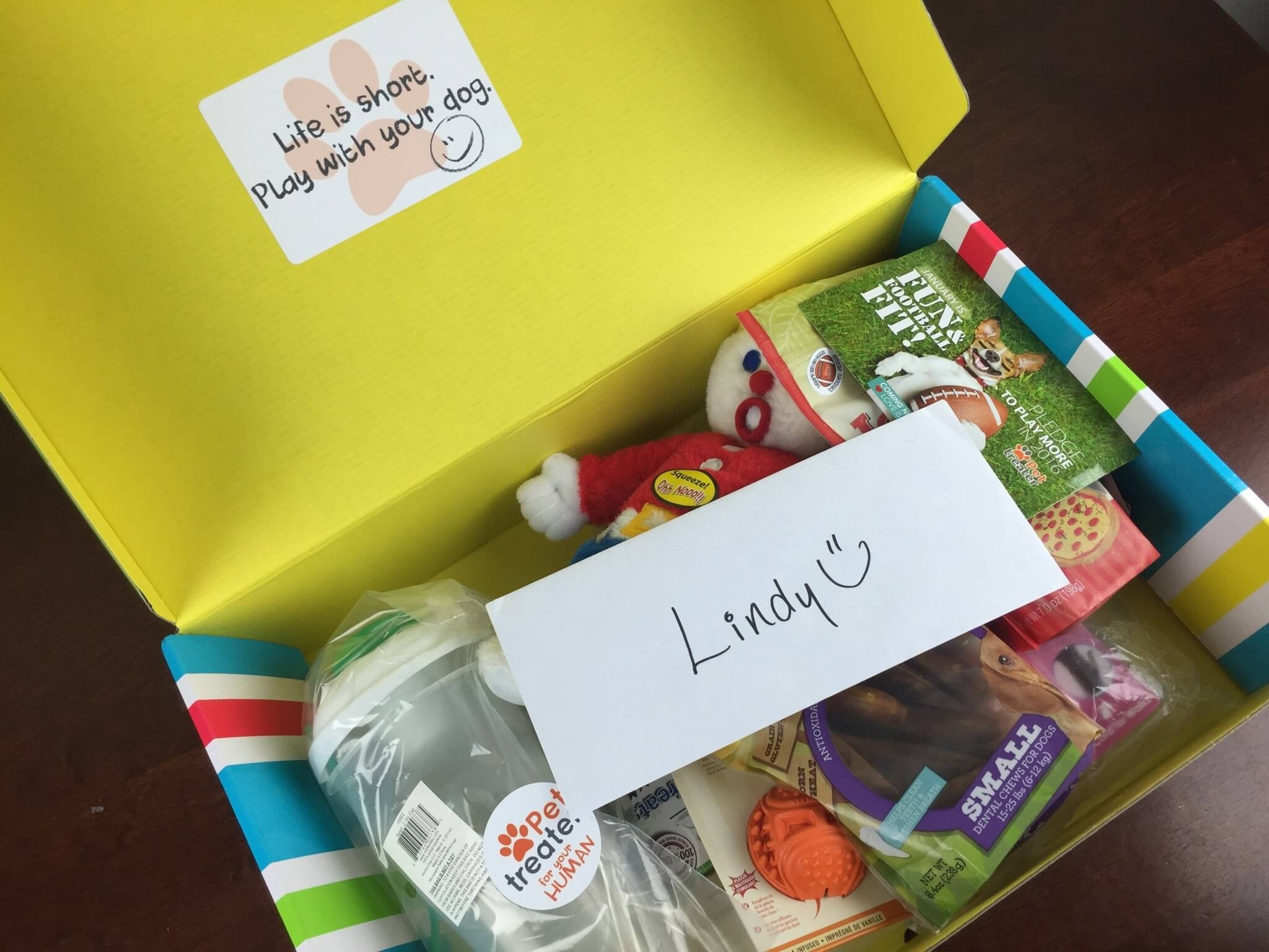 Pet Treater January 2016 Dog Subscription Box Review + Free Pet Bed Coupon!