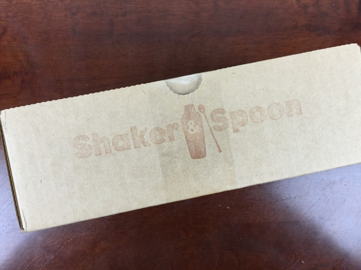 shaker and spoon march 2016 box