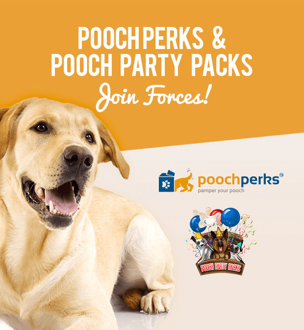 Free Treats with Pooch Perks Subscription + Pooch Party Packs Merger