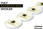 Yummy Bazaar May 2016 Sampler Box Spoiler!