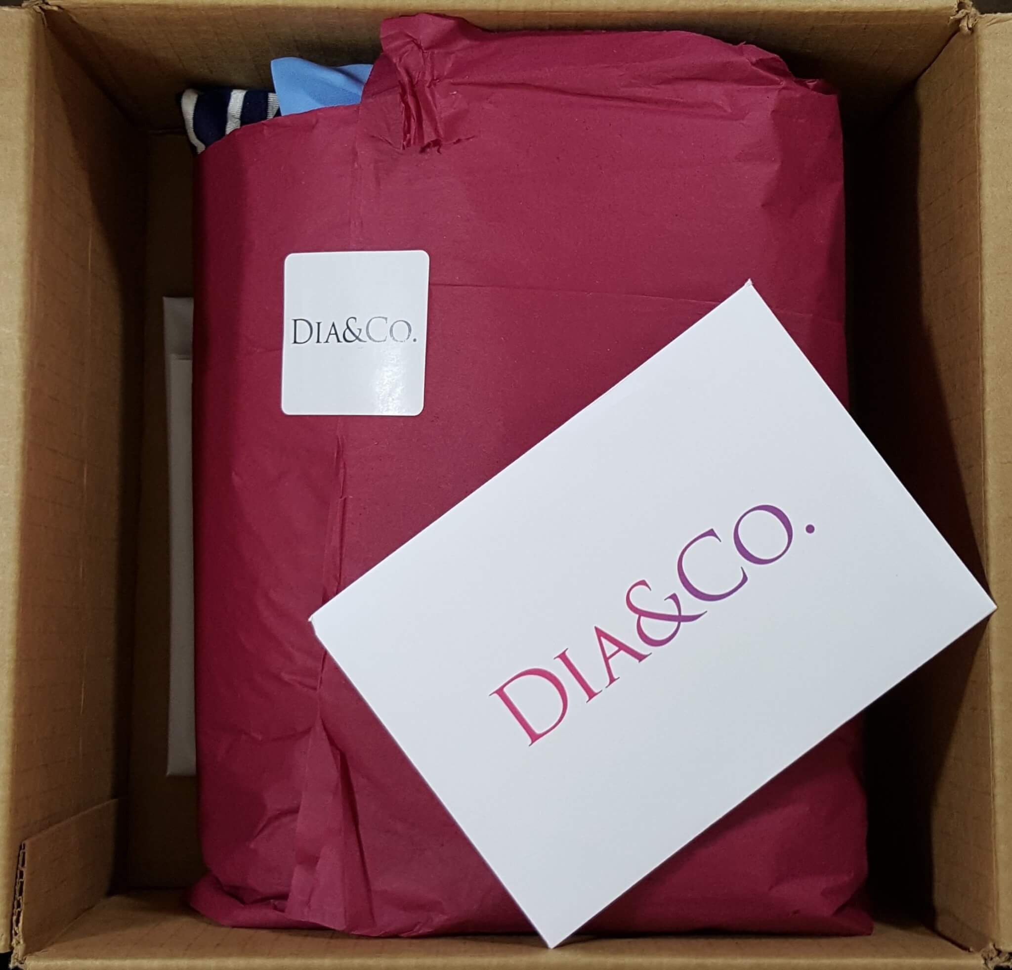 Dia & Co. Subscription Review – June 2016