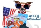Pooch Perks Memorial Day Sale: Save 40% Any Length Subscription!