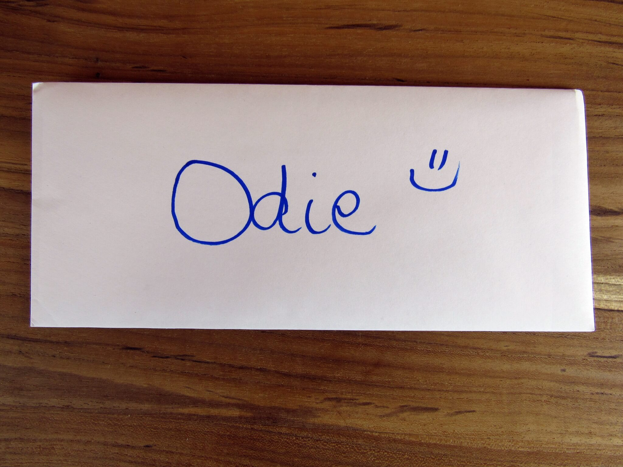 to Odie