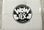 Wow Box June 2016 Subscription Box Review + Coupon