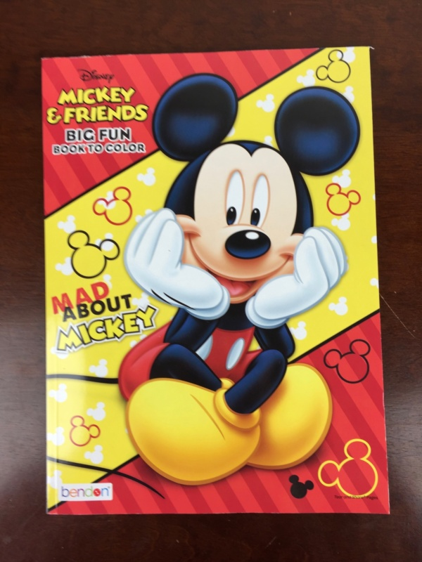 Mickey Monthly Box June 2016 (7)