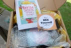 ReVibe June 2016 Subscription Box Review + Coupon – Bee Yourself Box