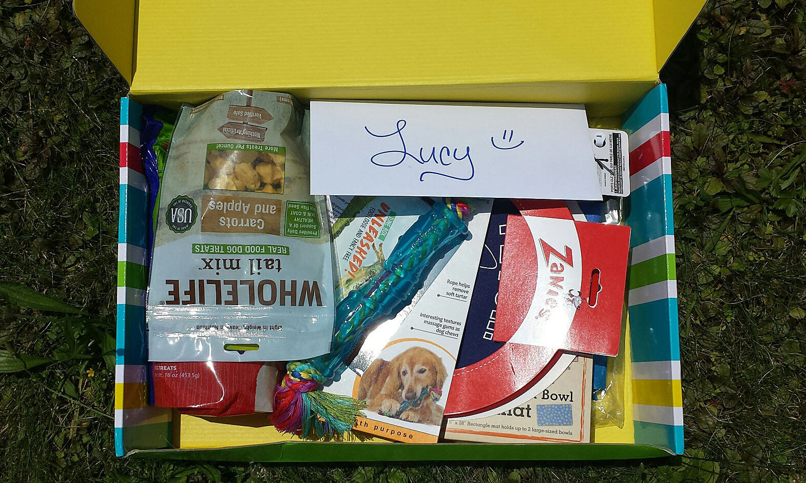 Pet Treater June 2016 Dog Subscription Box Review + Free Pet Bed Coupon