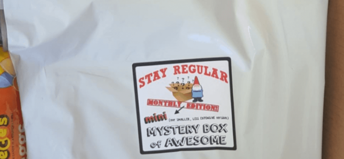 Mini Monthly Mystery Box of Awesome June 2016 Subscription Box Review