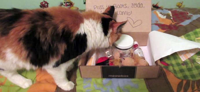 June 2016 Meowbox Subscription Box Review & Coupon