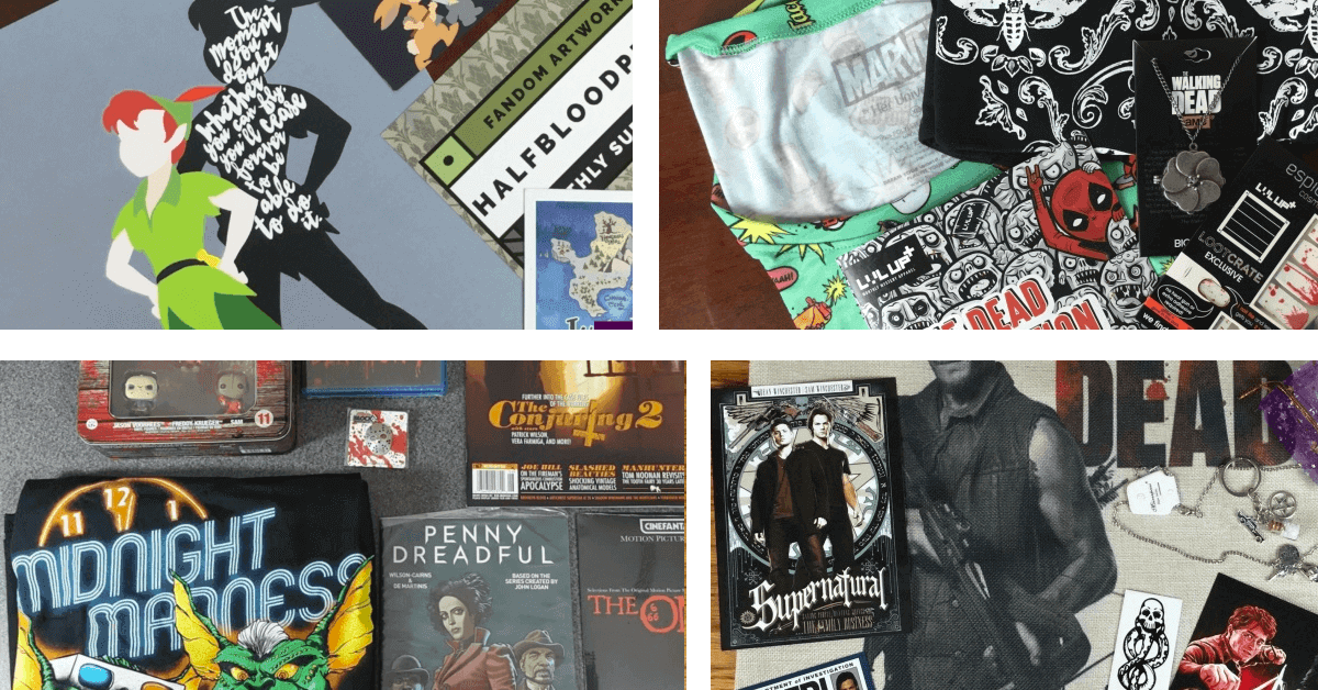 Best Subscription Boxes to Celebrate Embrace Your Geekness Day