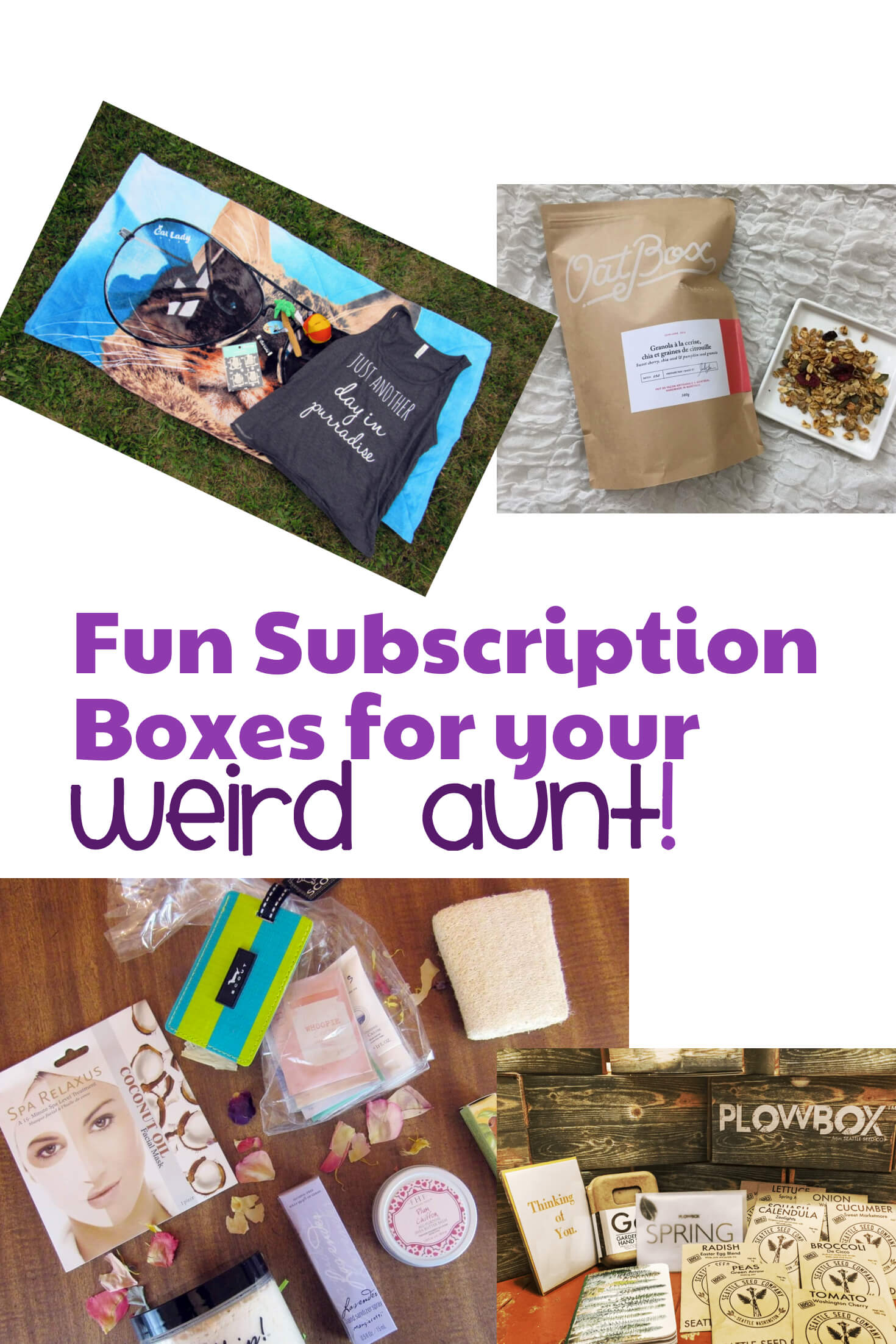 8 Subscription Boxes For Your Weird Aunt!