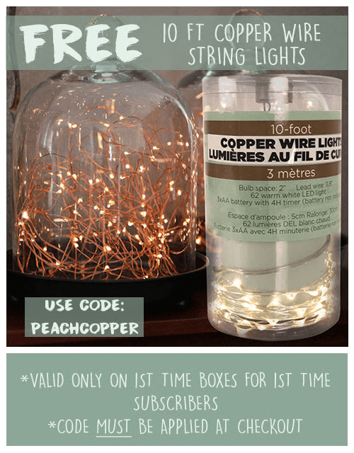 New Peaches & Petals Coupon – Free Fairy Lights With First Box!