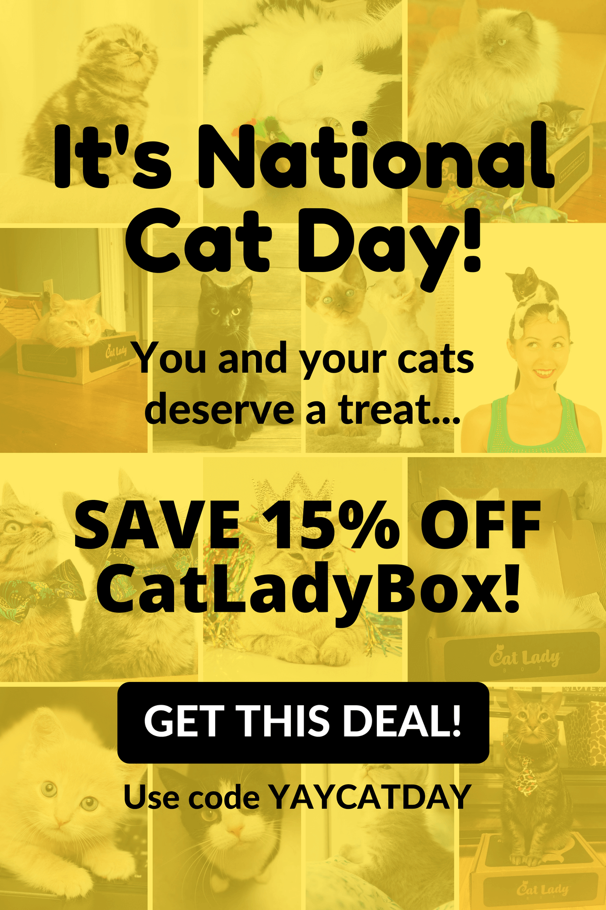 Cat Lady Box Coupon – Save 15% for Cat Day!