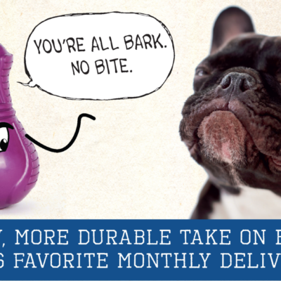 New Super Chewer BarkBox for Heavy Chewers Available Now!
