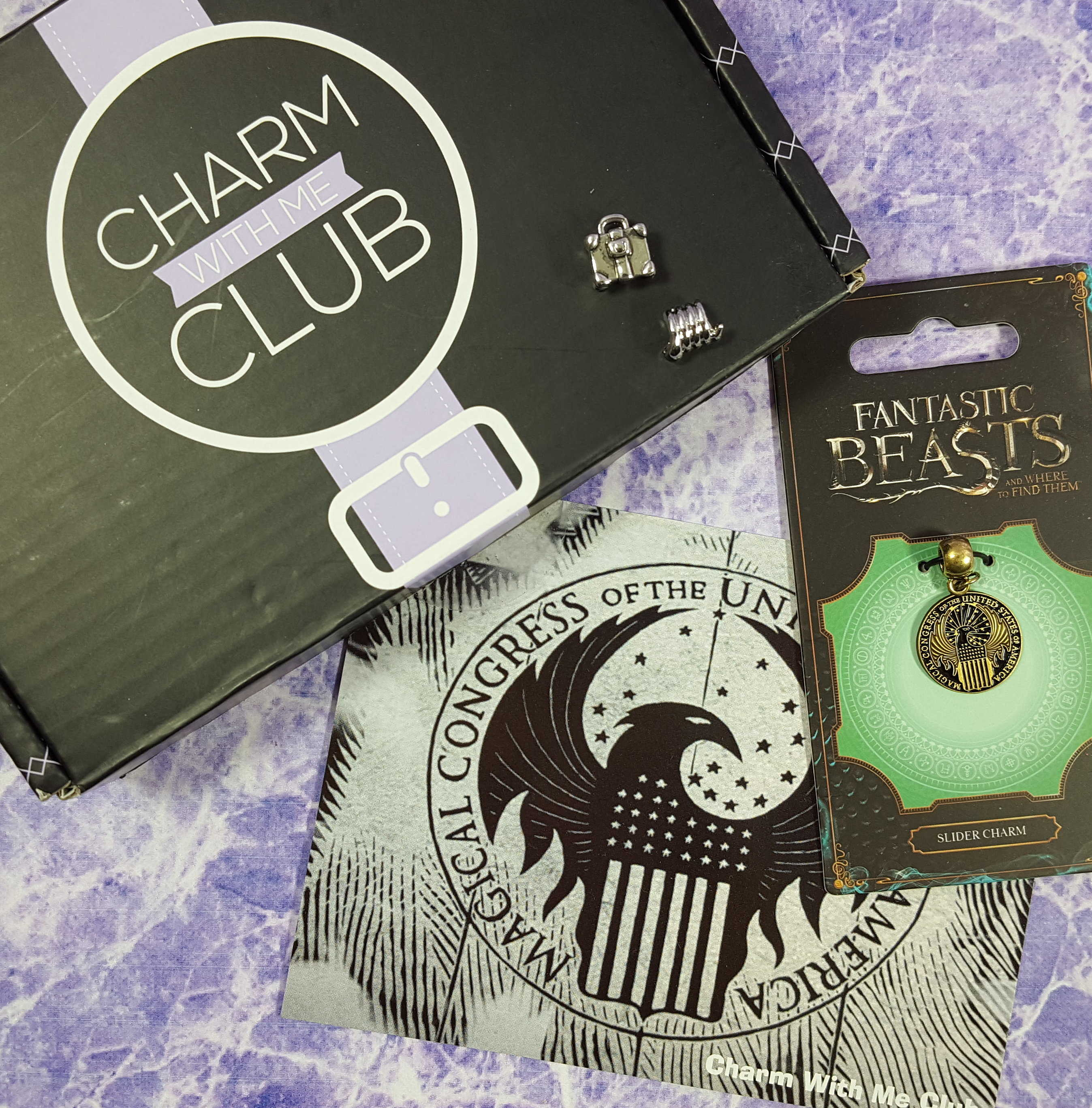 Charm With Me Club November 2016 Subscription Box Review + Coupon