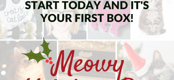 Cat Lady Box December Theme Spoiler & Coupon!