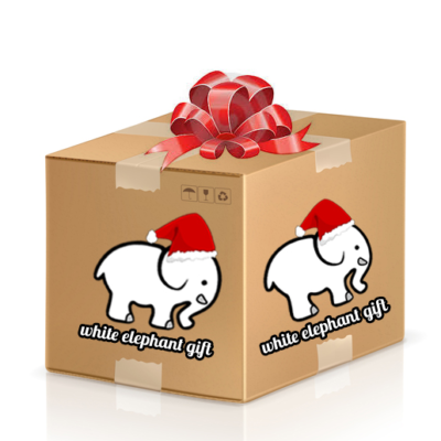 White Elephant Mystery Box from That Daily Deal!
