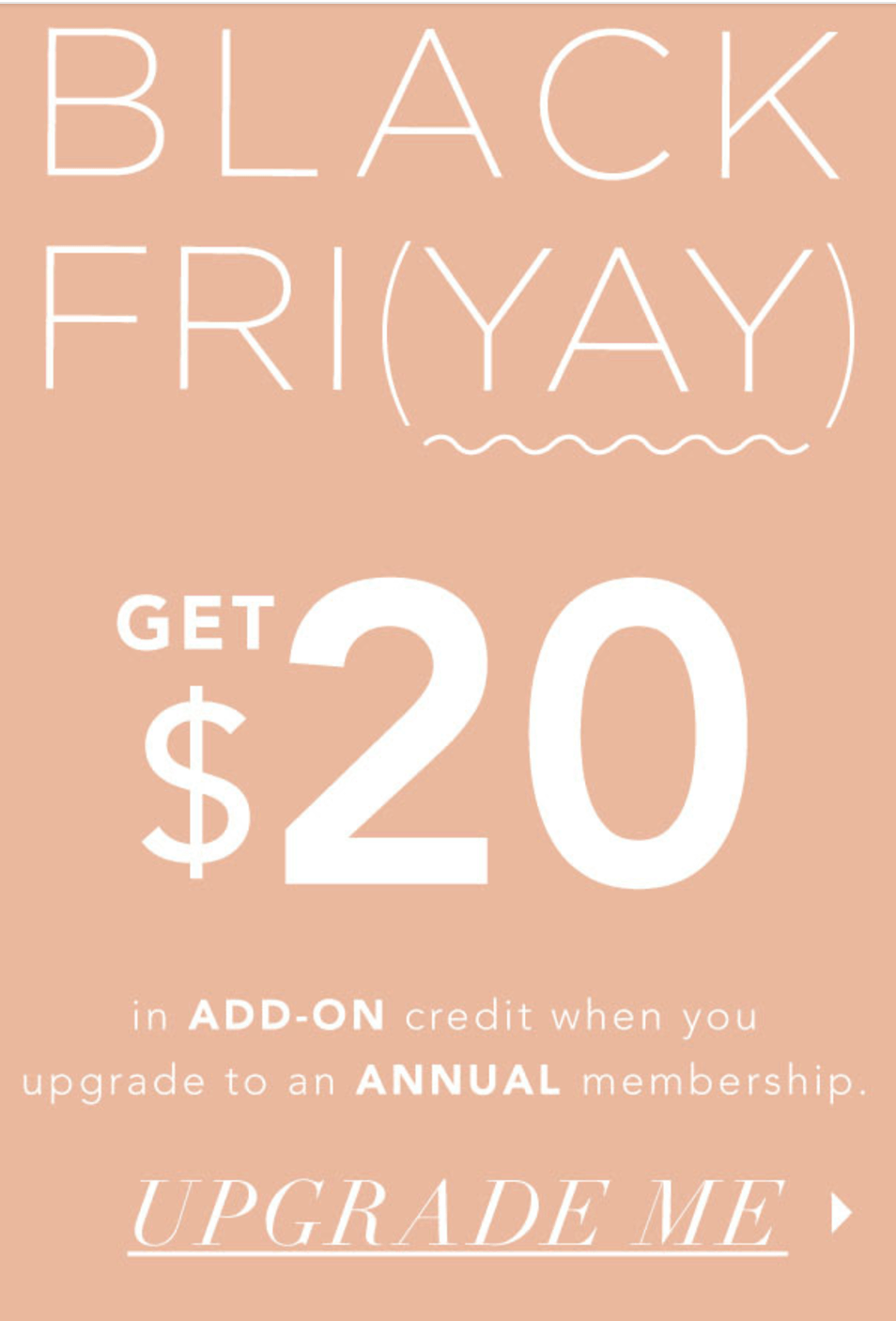 FabFitFun Box Current Subscriber Black Friday Deal: $20 Add-On Credit With Upgrade!