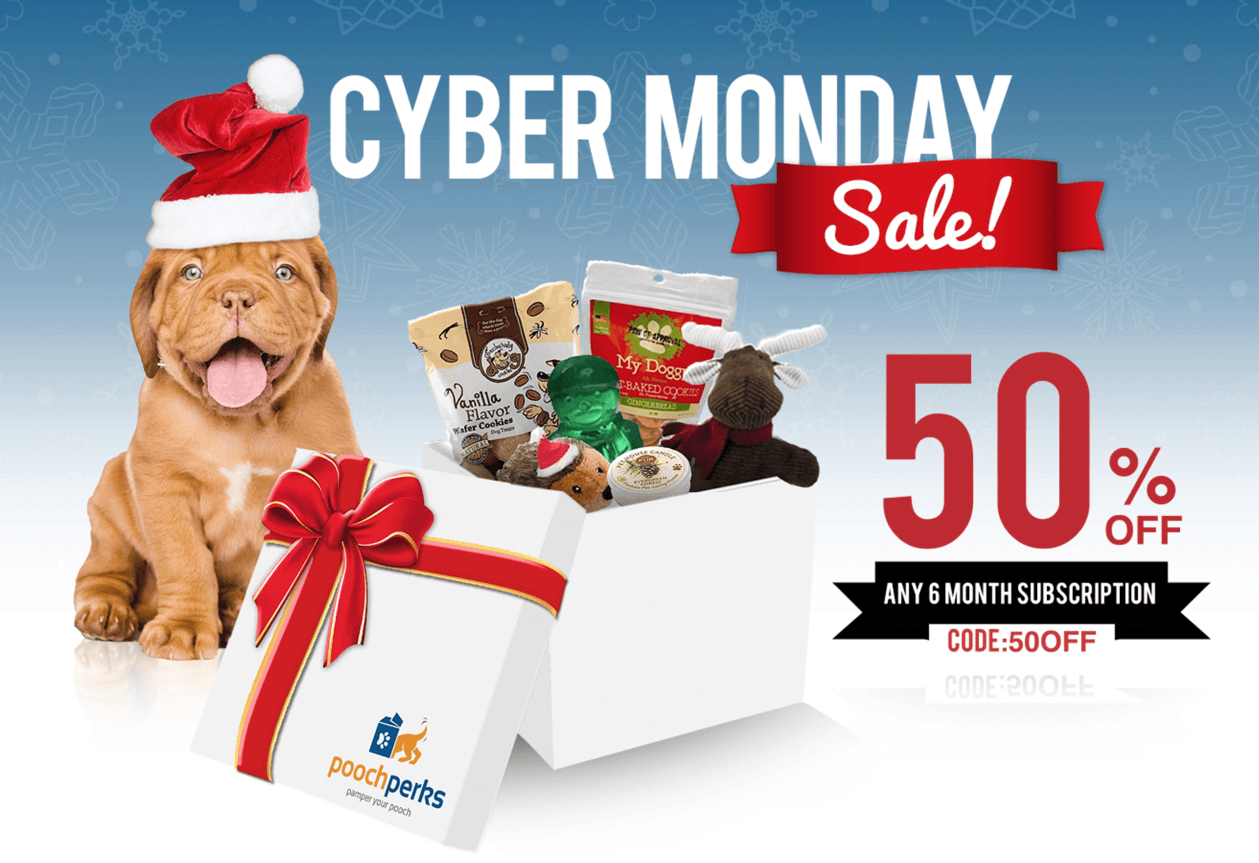 Pooch Perks Cyber Monday Sale: Save 50% Off 6 Month Subscriptions!