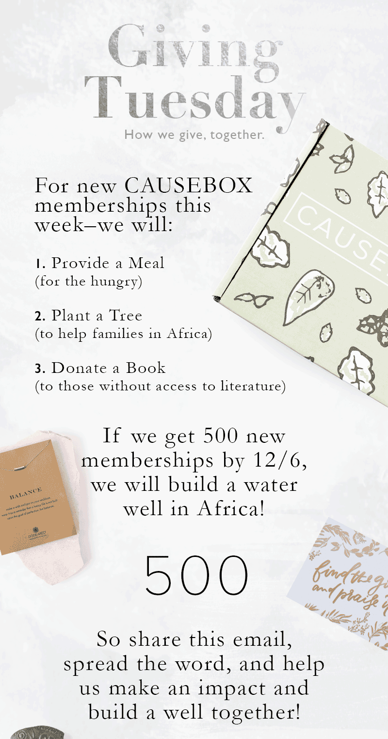 CAUSEBOX Giving Tuesday Deal + Winter Box Spoiler!