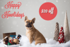Pooch Perks Cyber Week Coupon: Save $20 on Prepaid Plans!