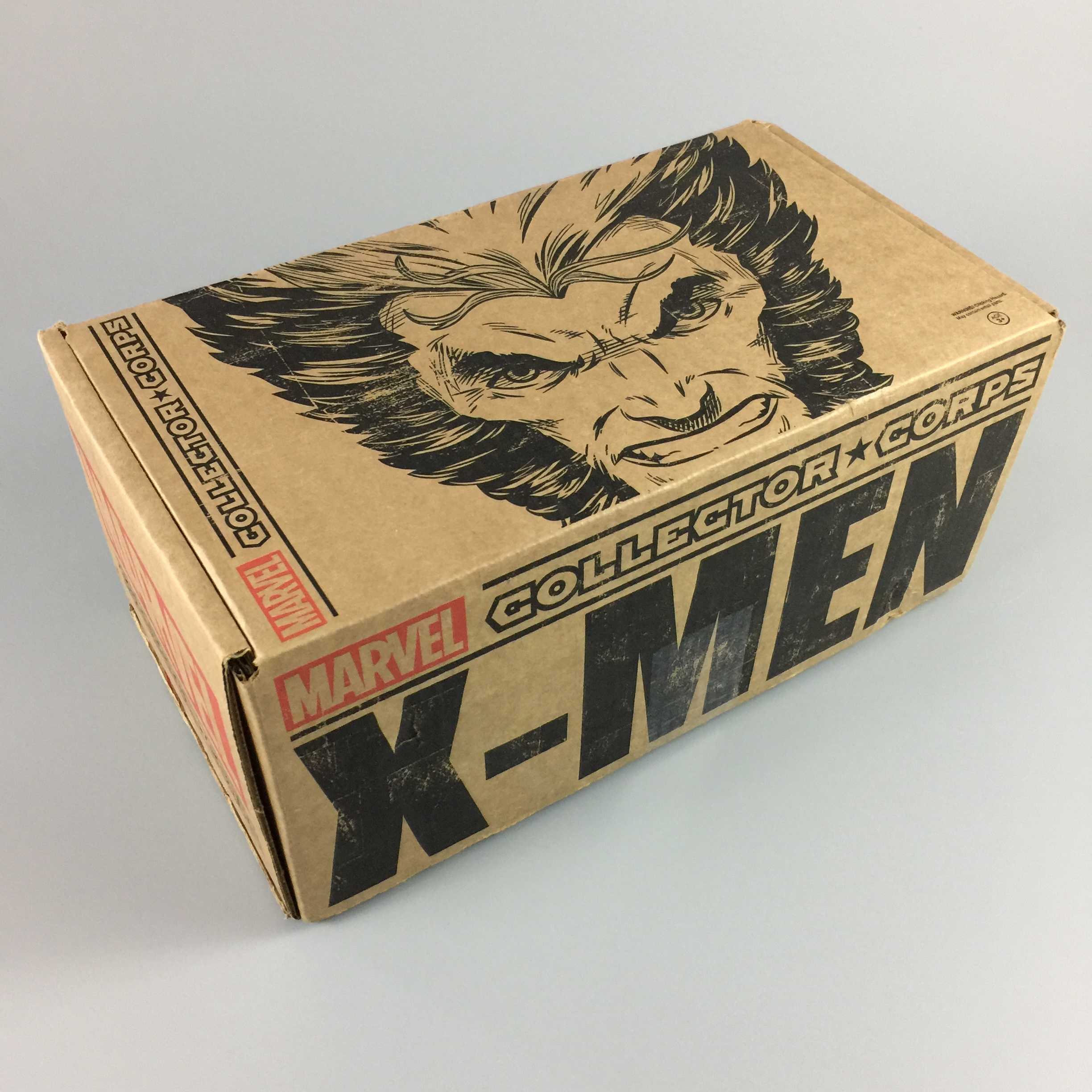 Marvel Collector Corps December 2016 Subscription Box Review – X-Men