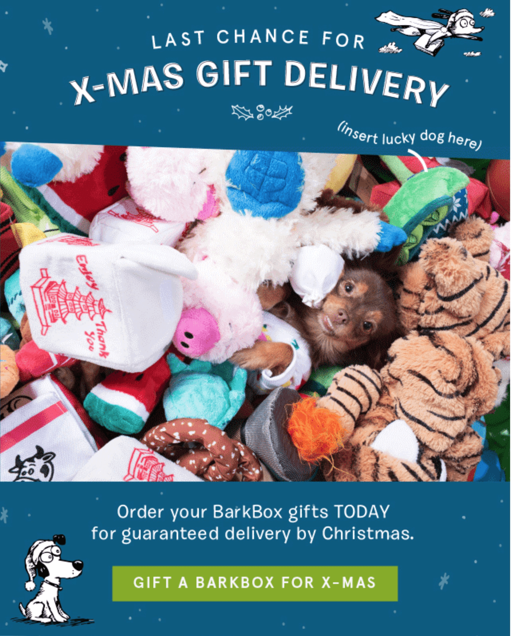 BarkBox – LAST DAY for Holiday Delivery + Coupon!