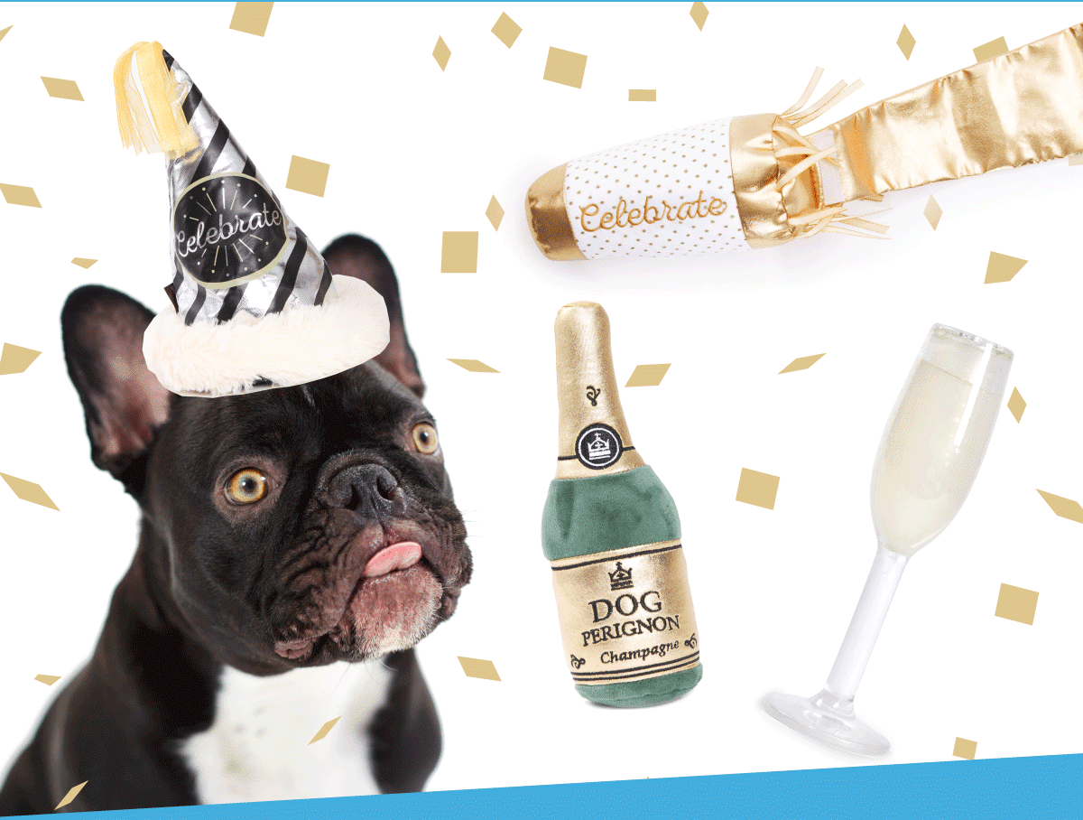 BarkBox – Printable Gift Certificates Available For Gifting!