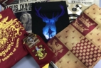 Geek Gear World of Wizardry January 2017 Subscription Box Review