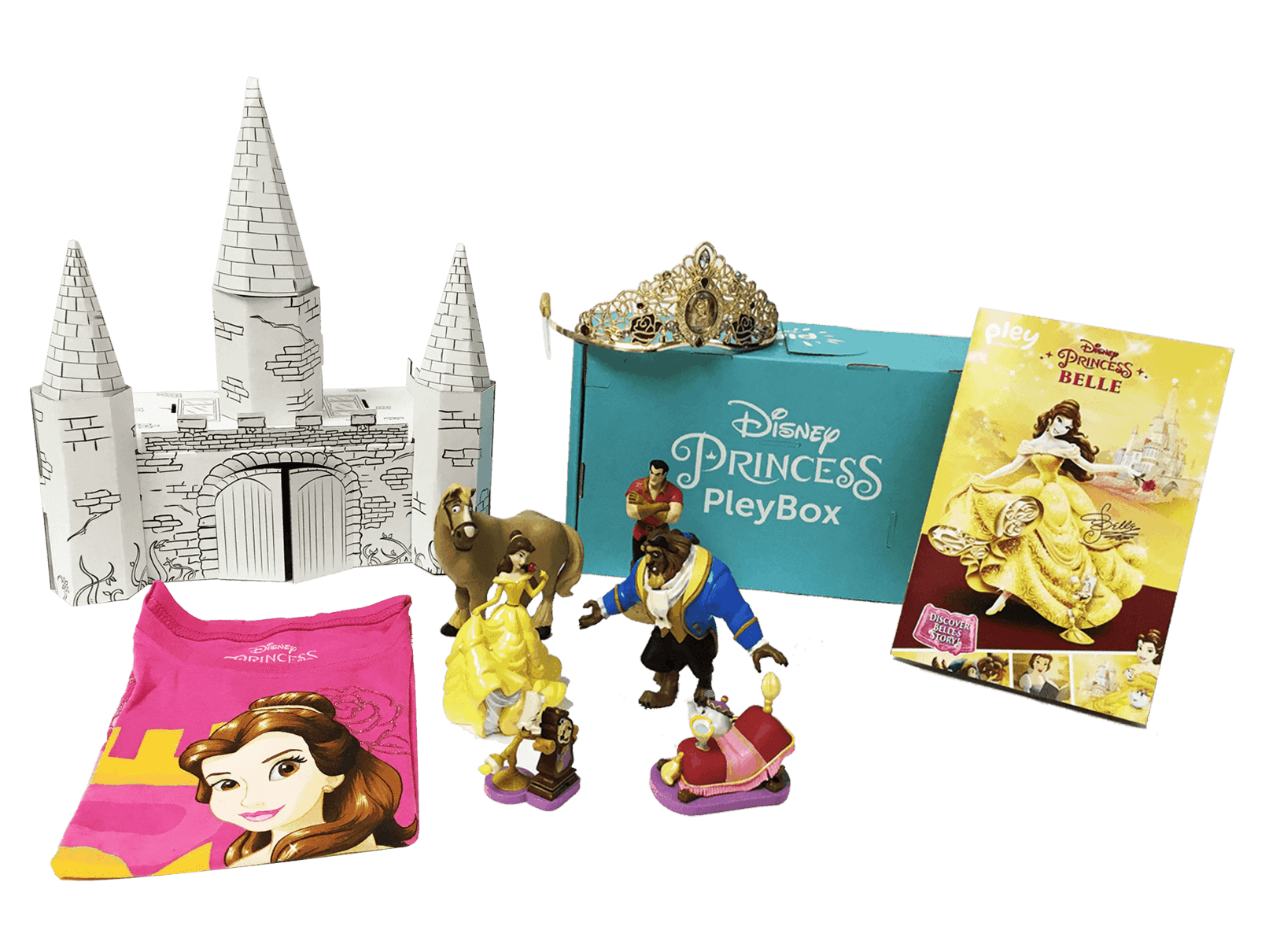 Disney Princess Subscription Coupon: Save 25% on First Box!