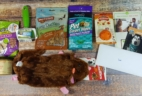 Pet Treater Dog Subscription Box Review + Coupon – January 2017