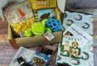Wigglebutt Box Dog Subscription Box Review – January 2017
