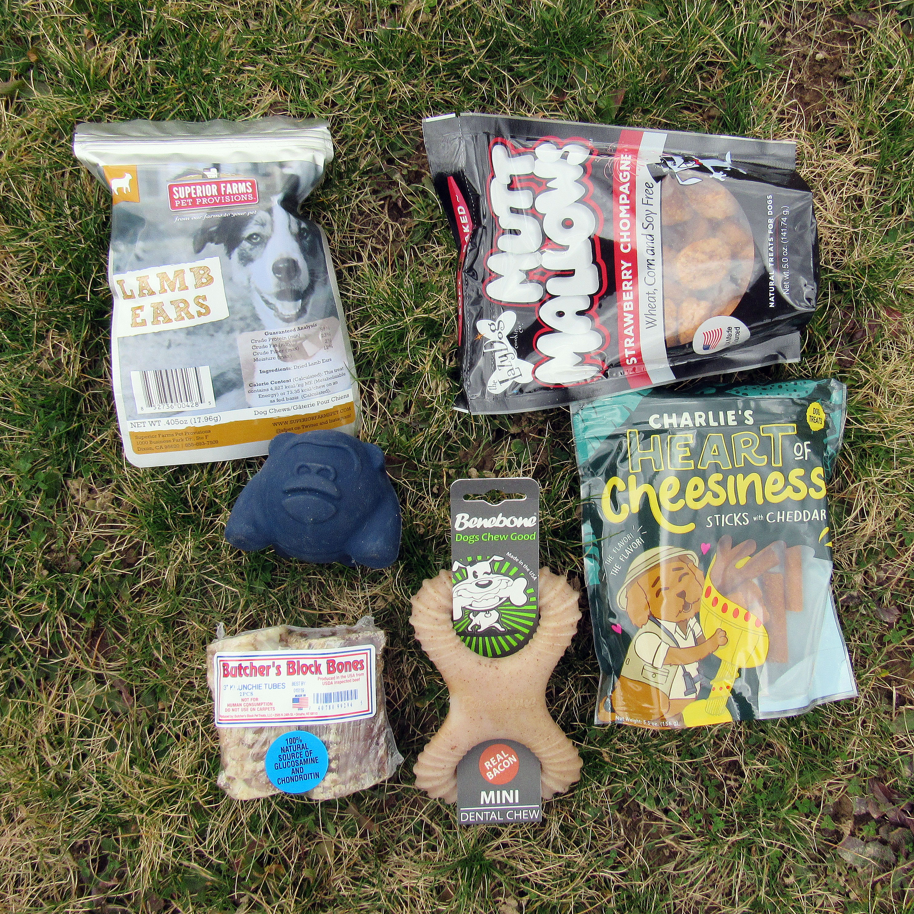 Barkbox February 2017 Subscription Box Review – Super Chewer