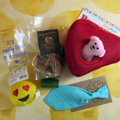 Surprise Pawty February 2017 Subscription Box Review + Coupon
