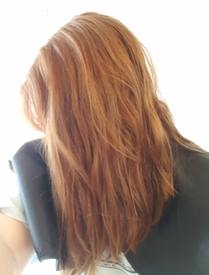 February 2017 Esalon Custom Hair Color Subscription Review Coupon