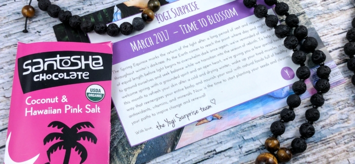 Yogi Surprise Jewelry Box Subscription Review – March 2017