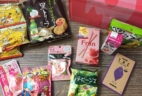 Wow Box Kawaii & Beauty February 2017 Subscription Box Review