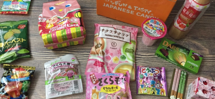 Tokyo Treat March 2017 Subscription Box Review + Coupon!
