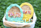Foodstirs 50% Off Coupon: March 2017 Blooming Basket Cookie Kit! UPDATED CODE
